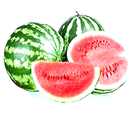 هندوانه (هر 1کیلو)